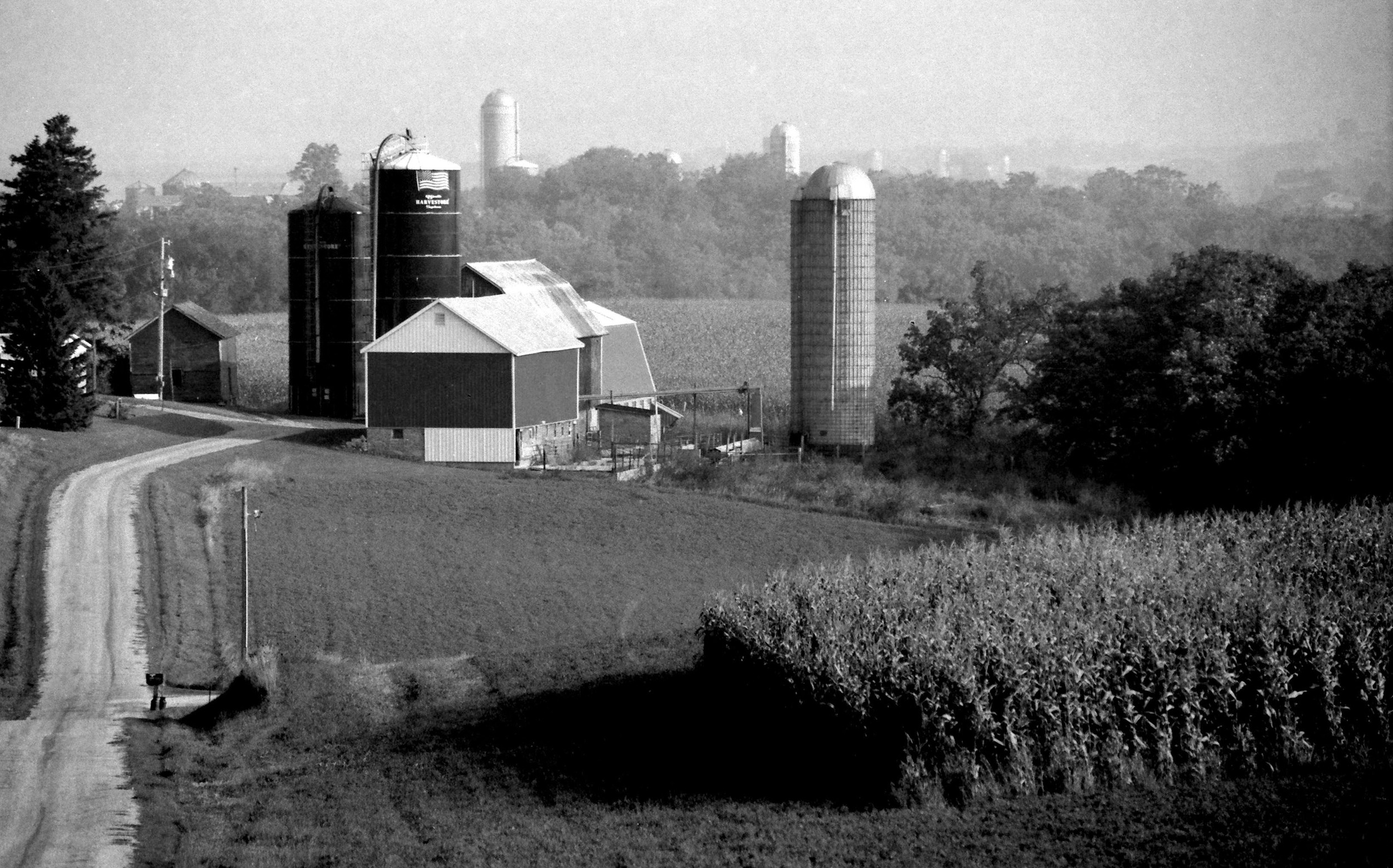 Dane County, Wisconsin, where Ernie was born and lived for many years.