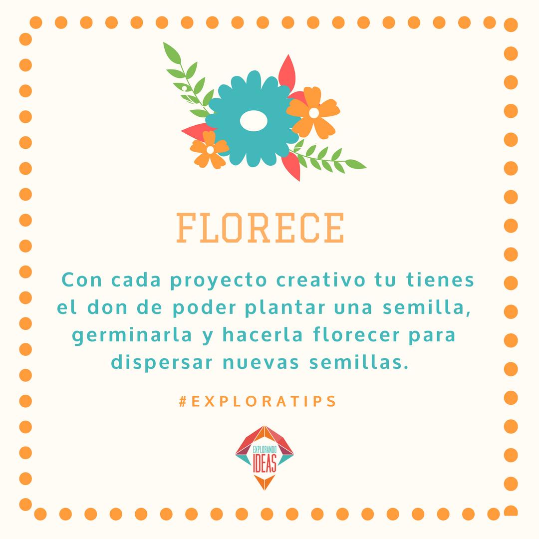 florece tip (1).png