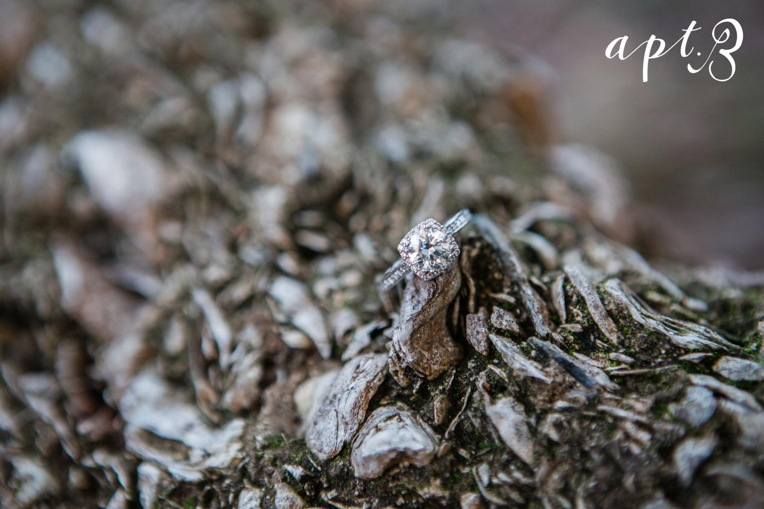 AptBPhotography_KirstieCarlosTOBLOG-49.jpg