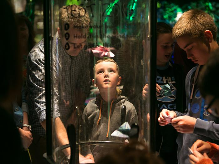 interacting-bug-lab-te-papa-700x525.jpg