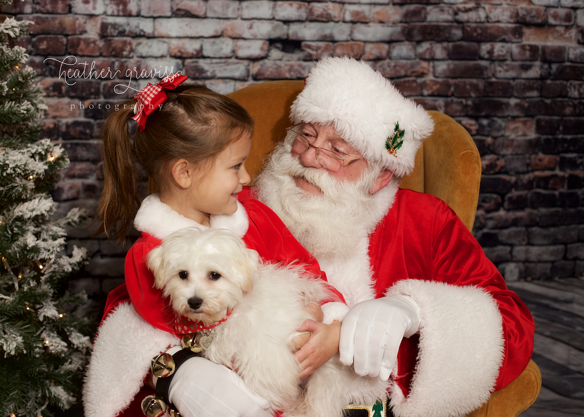 sweet-girl-with-santa-and-dog.jpg