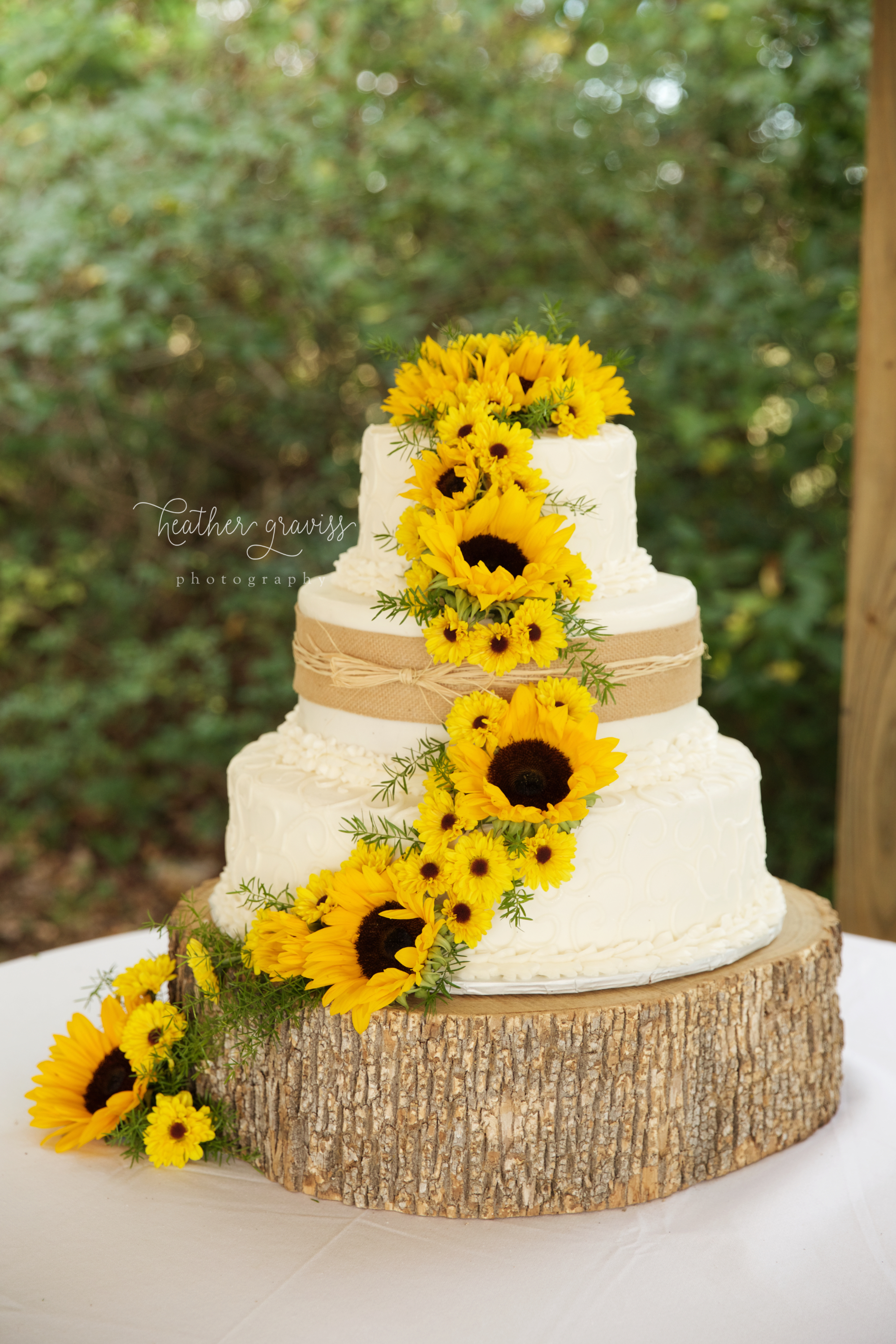 32 sunflower-cake.jpg