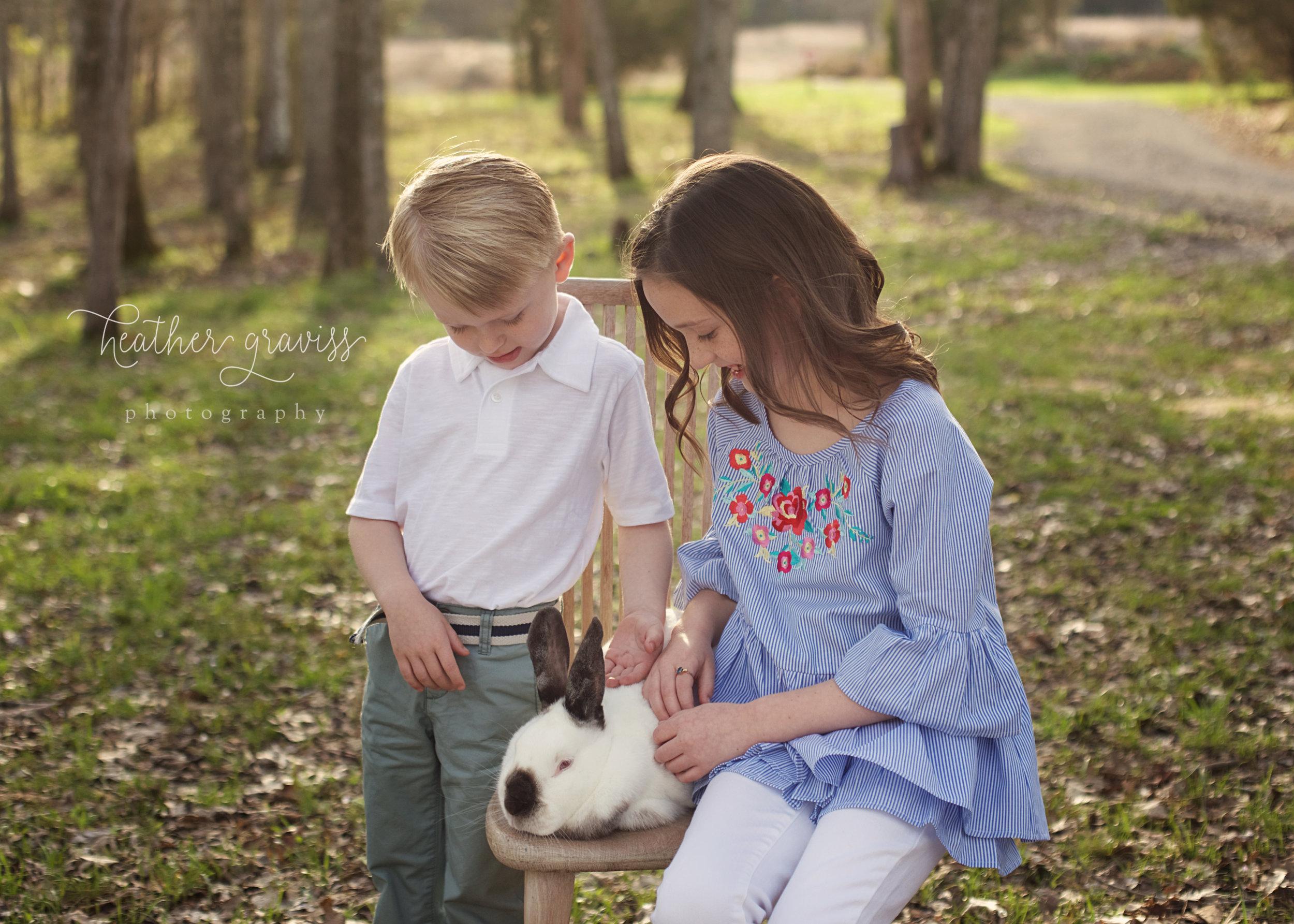 petting-bunny.jpg