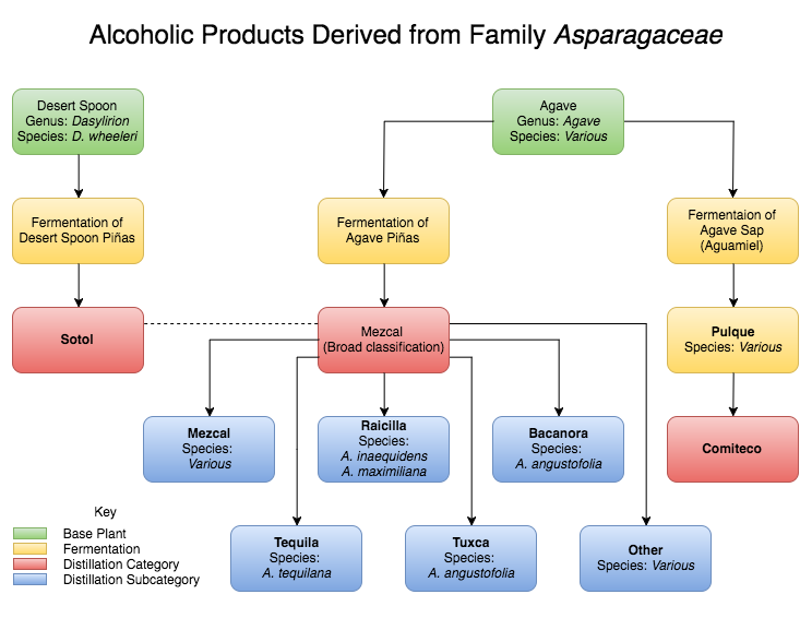 Alcohol From Agave (5).png