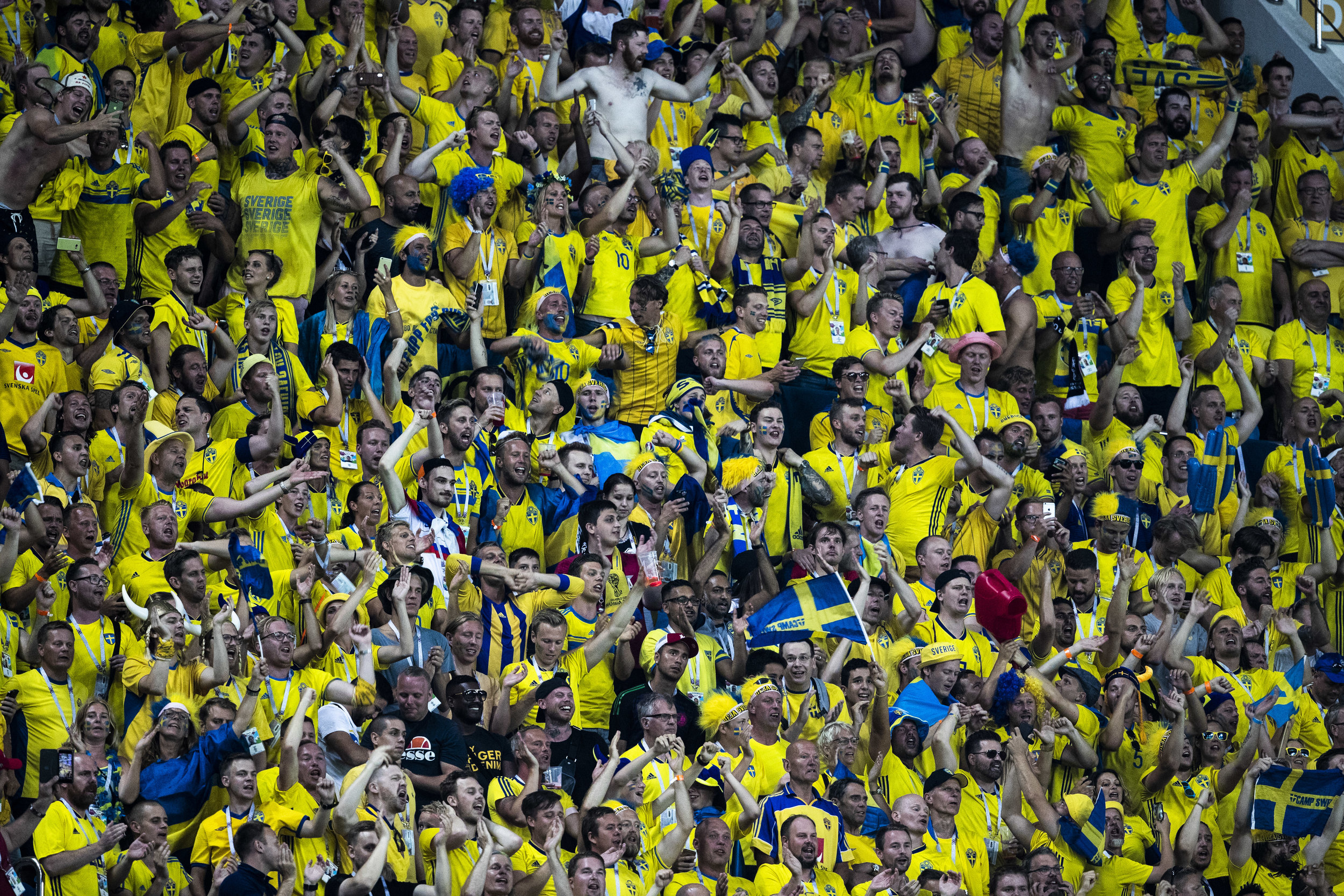 Swedish supporters celebrate their team's goal against Germany in Sochi