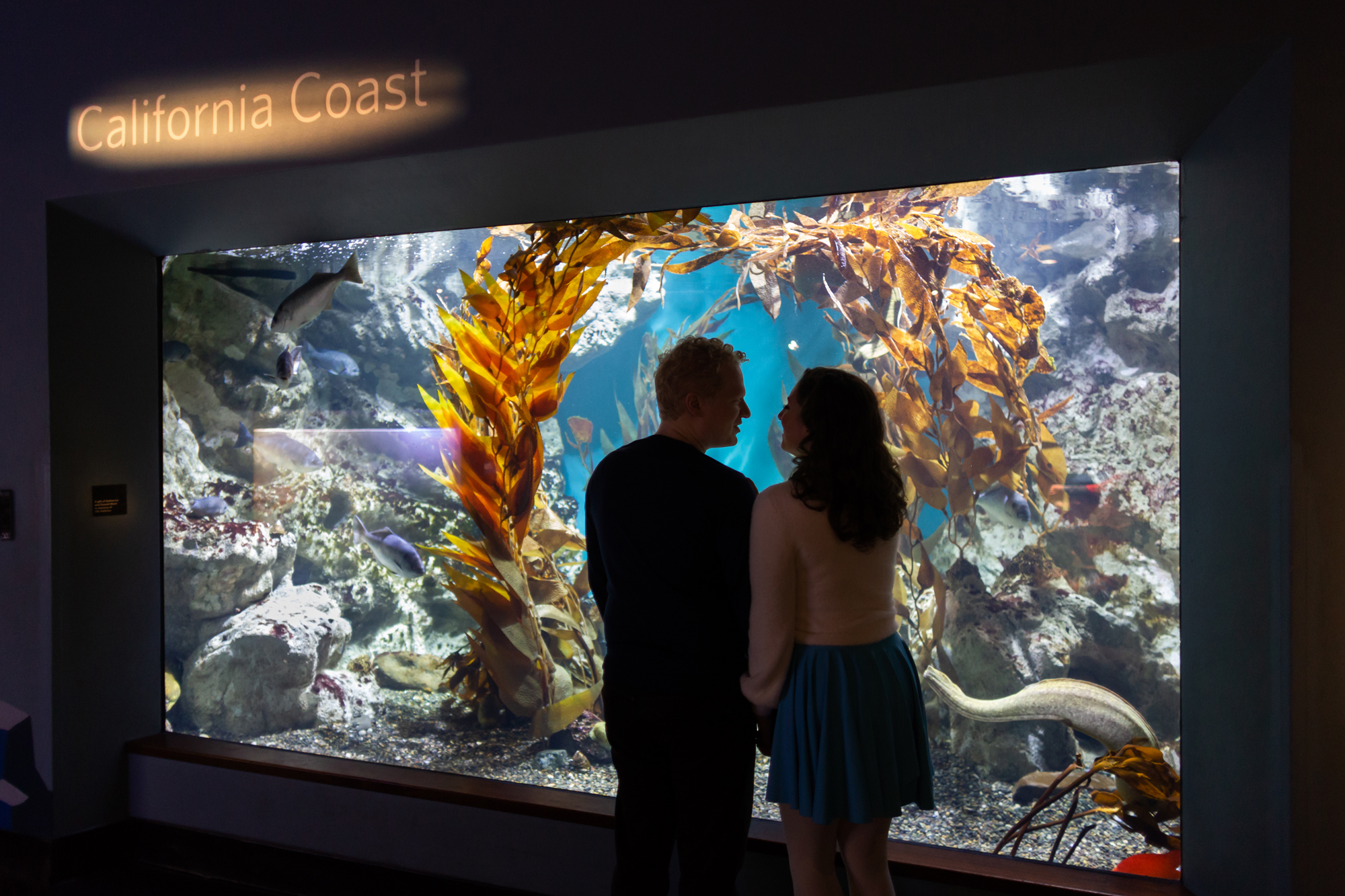 california-academy-of-sciences-engagement-photography-lilouette-16.jpg