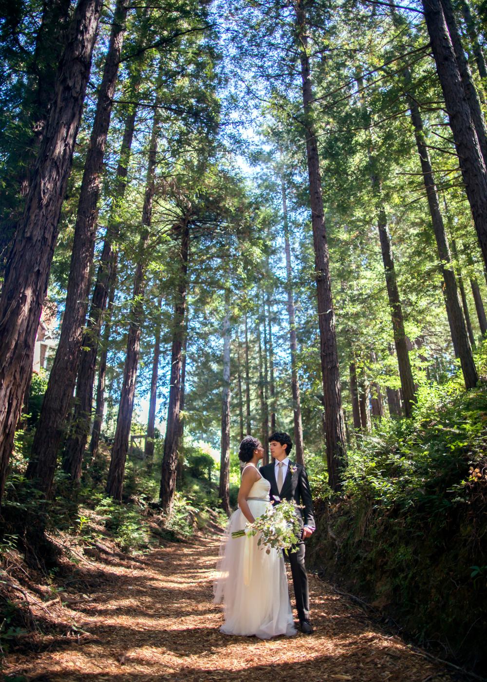 ralston-white-retreat-mill-valley-wedding-photography-lilouette-30.jpg