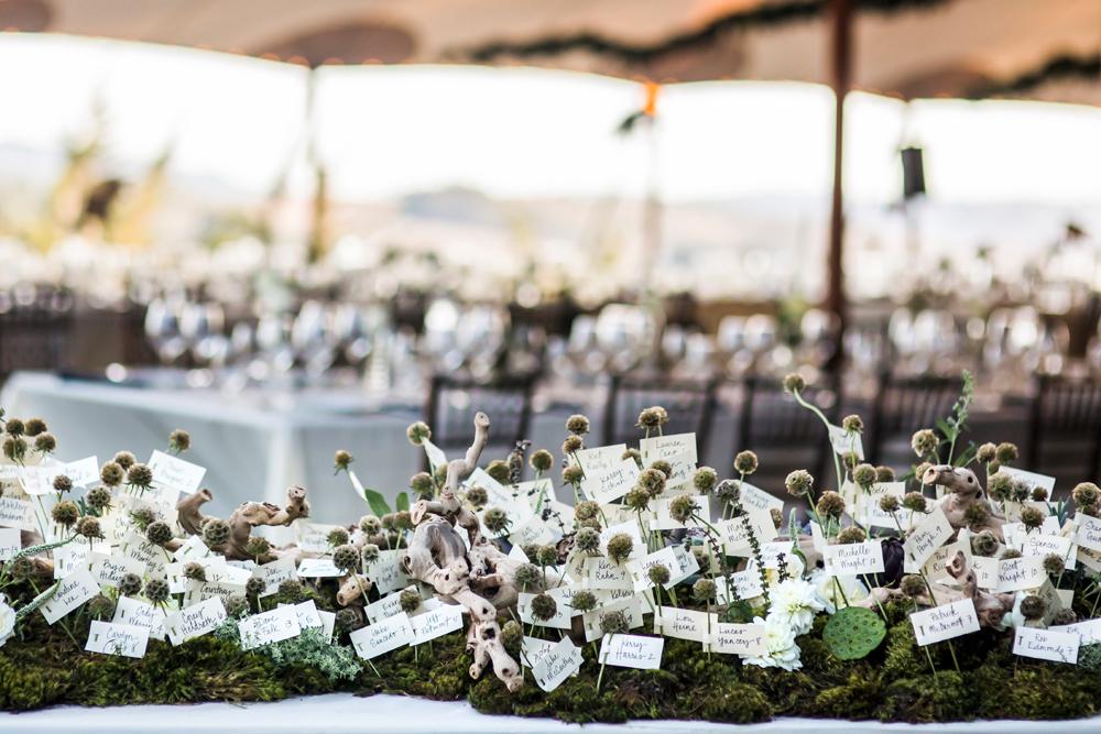 pescadero-private-estate-wedding-photography-lilouette-46.jpg