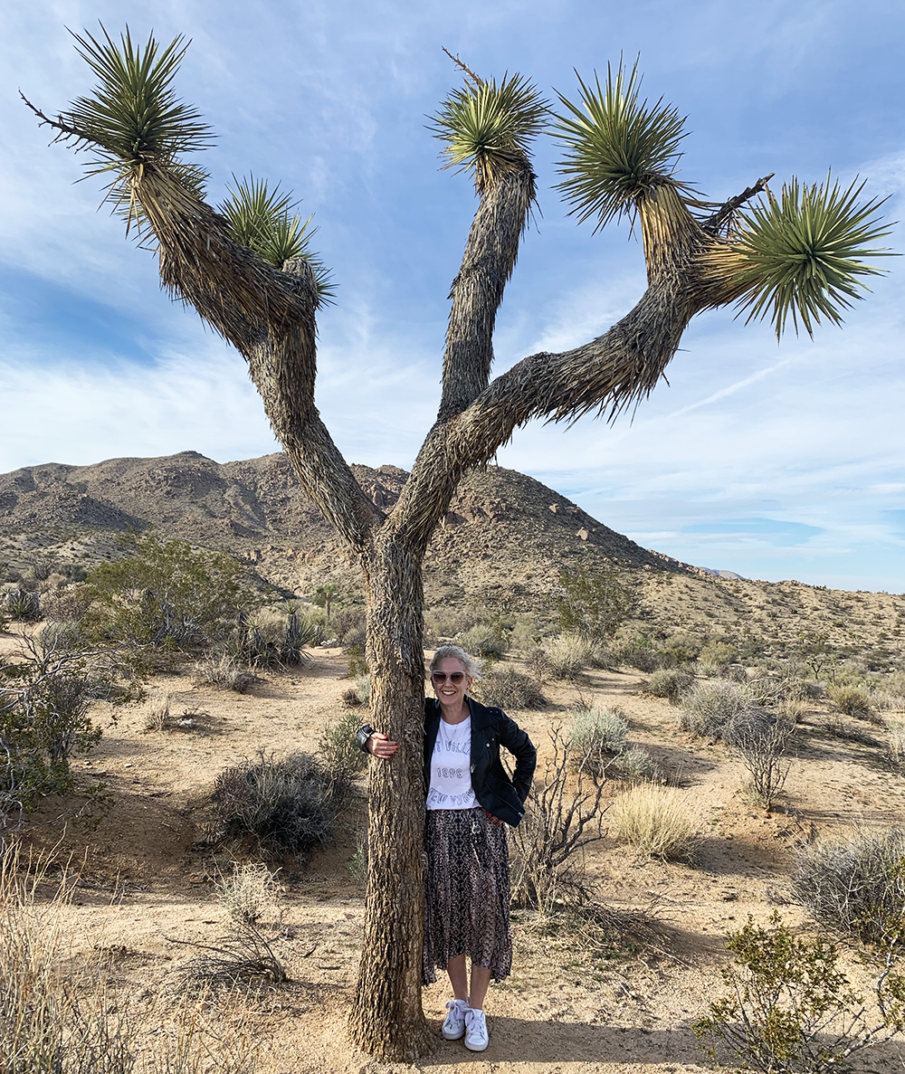 Kirsten Ford Design-Palm Springs Guide-Joshua Tree National Park