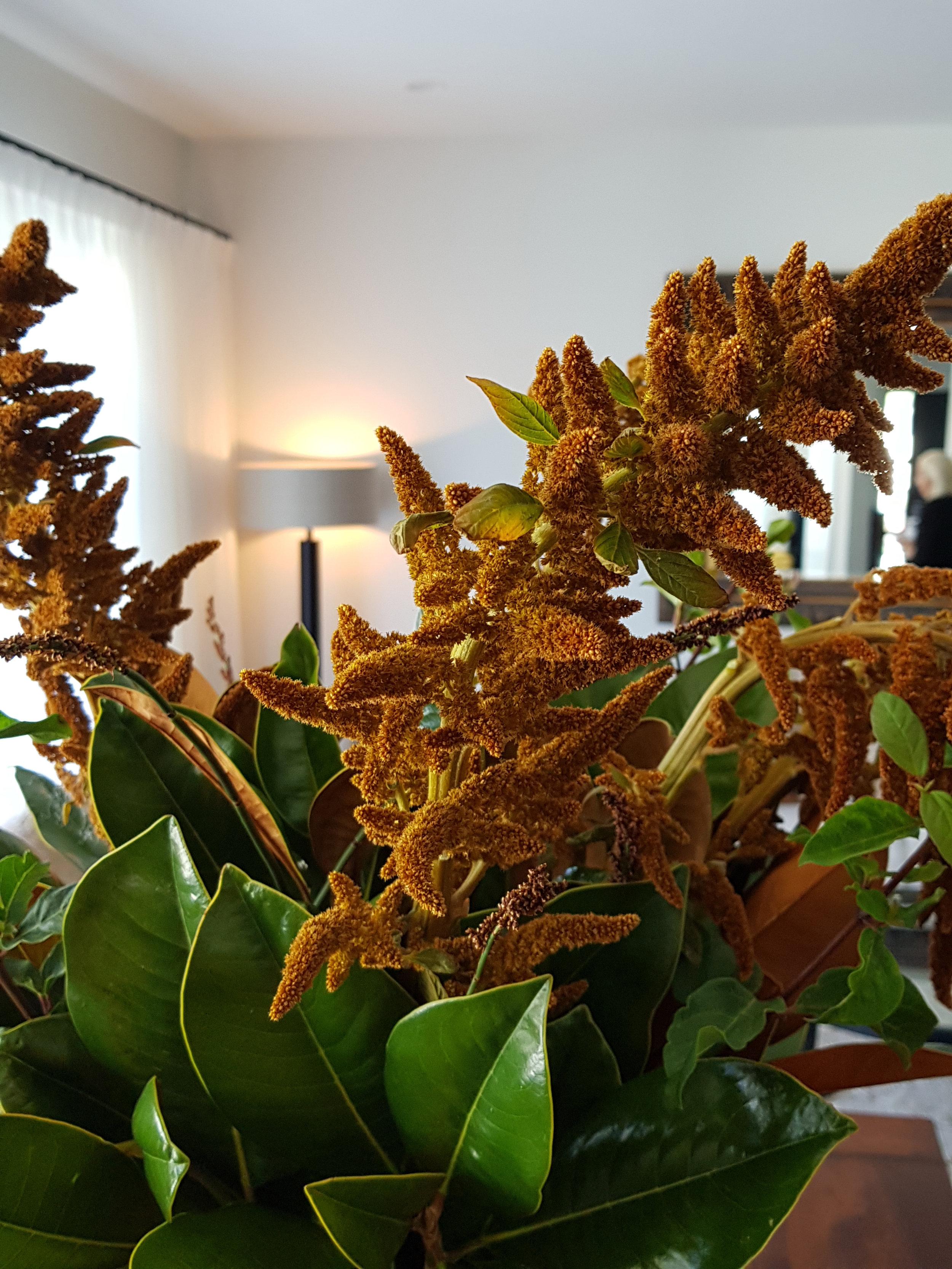 Kirsten Ford Design-Heirloom Inspired Dining Room 3