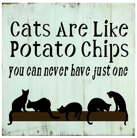 "Pets1: Cats are like potato chips (14"" x 14"")"