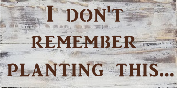 "T18: I don't remember planting (10"" x 18"")"