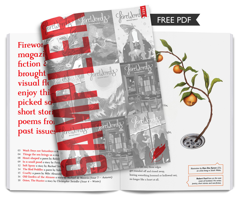 Click to download your free copy of our Sampler Issue