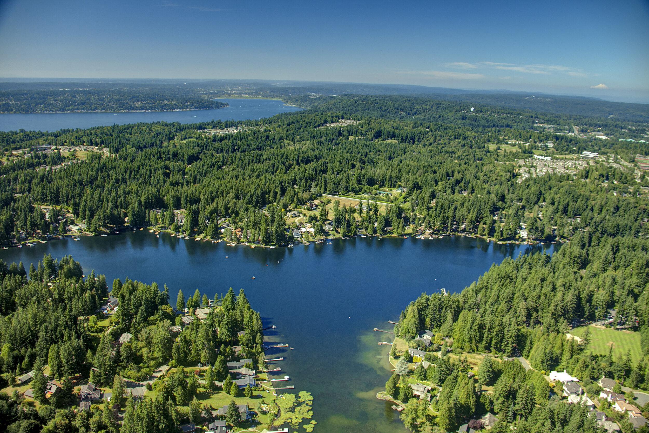 Pine Lake07.jpg