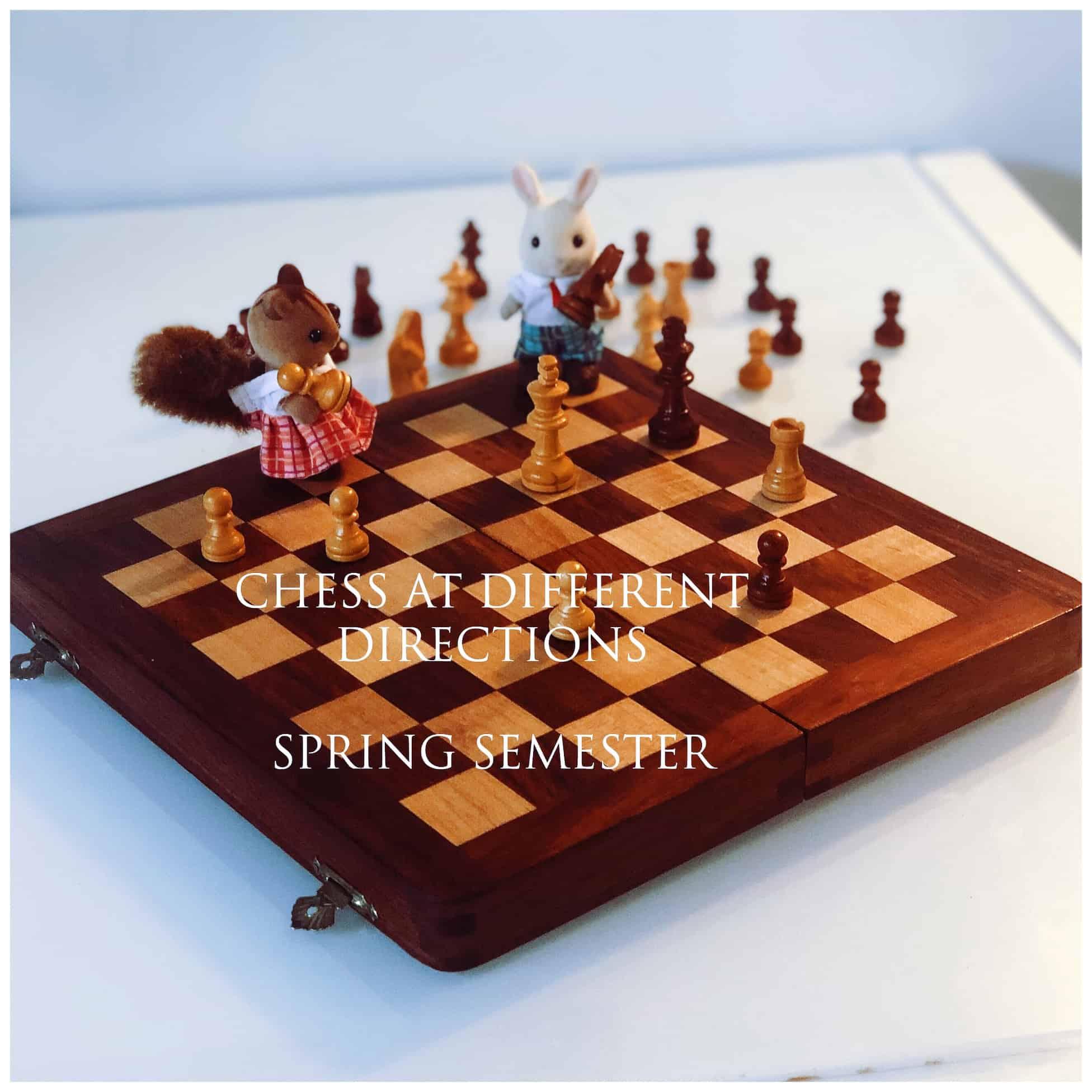 Chess for Kids Spring Semester.JPG