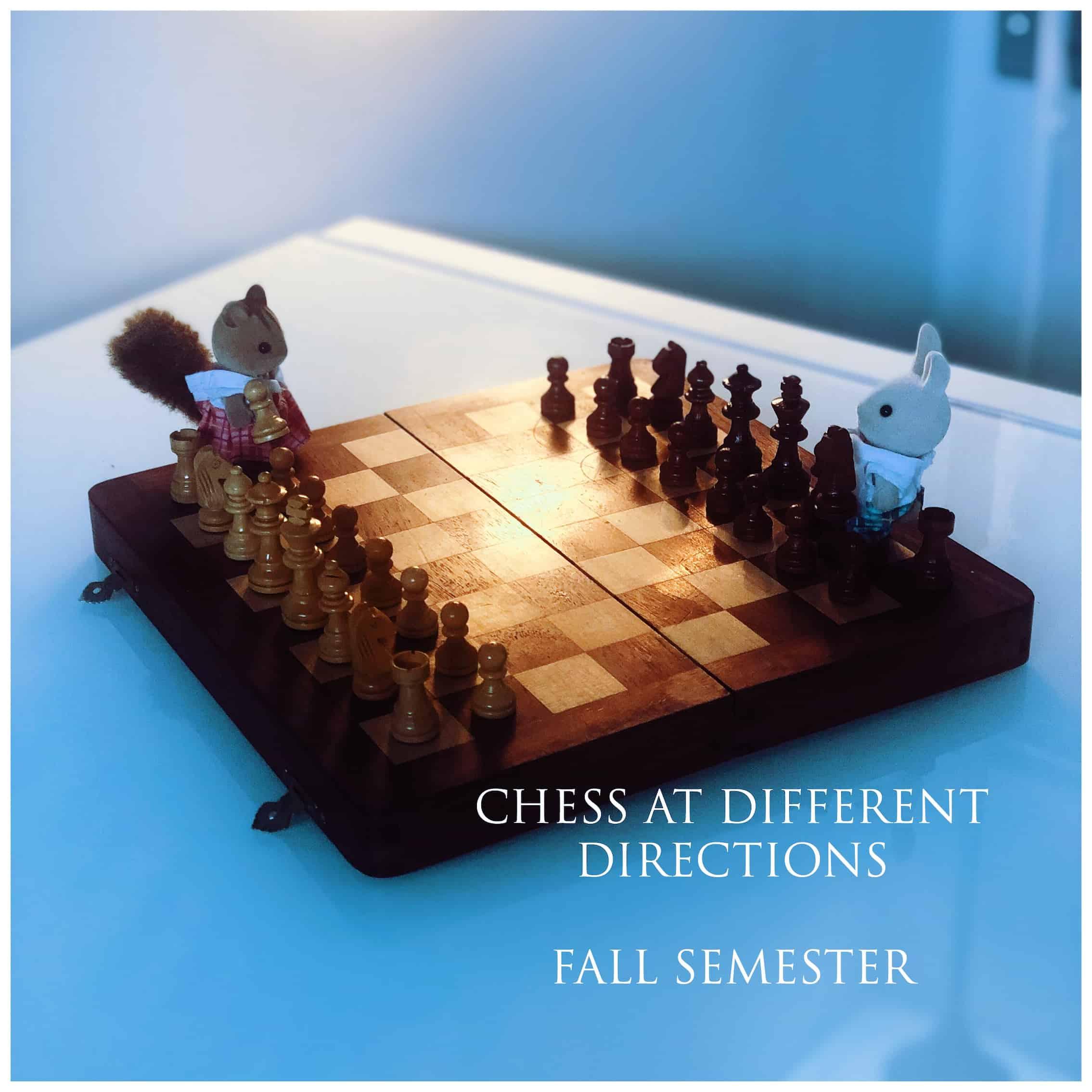 Chess for Kids Fall Semester.JPG