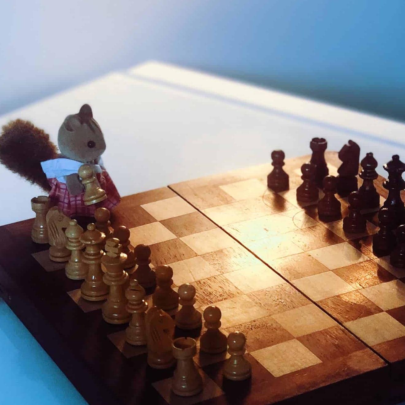 Chess+for+Kids+Fall+Semester.jpg