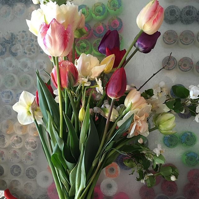 My Christmas present in May, thanks @itsyourbuoy and @valleybudsflowerfarm #csa #tulips #appleblossom #daffodils