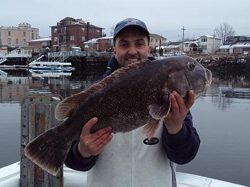 Blackfish 12-2009 008.JPG