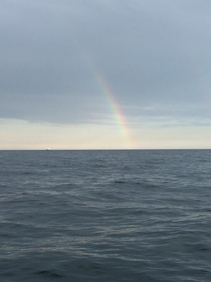 rainbow 16.jpeg