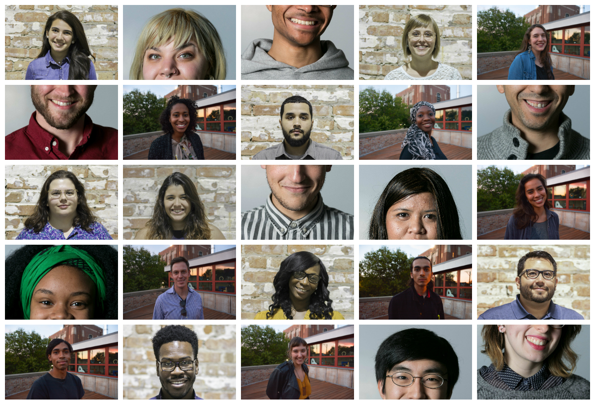 fellows headshot collage .jpg