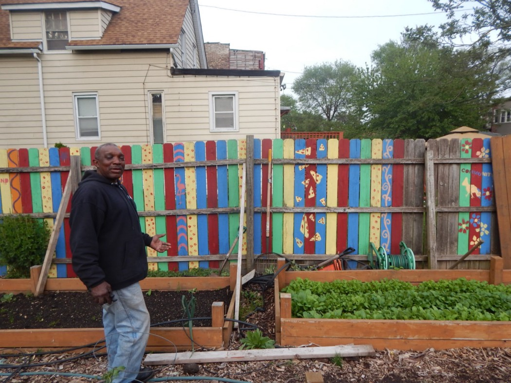 After three decades working at incinerator sites in Chicago, Sam Taylor now spends his time tending to 36 community gardens. (Photo: Darien Boyd)