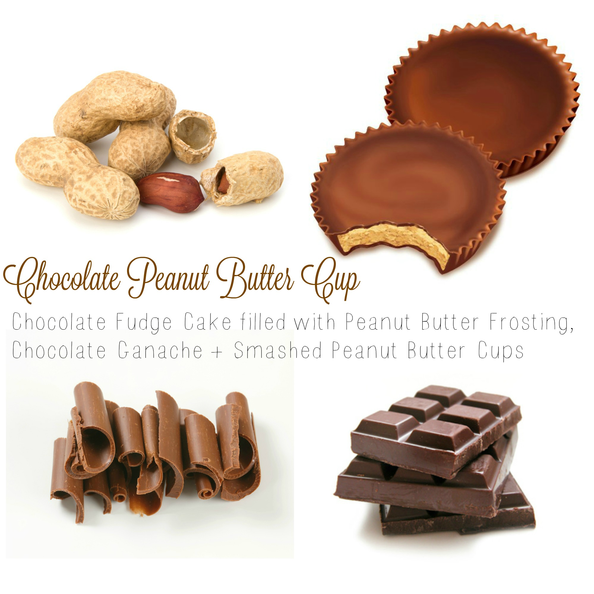 Chocolate Peanut Butter Cup.jpg