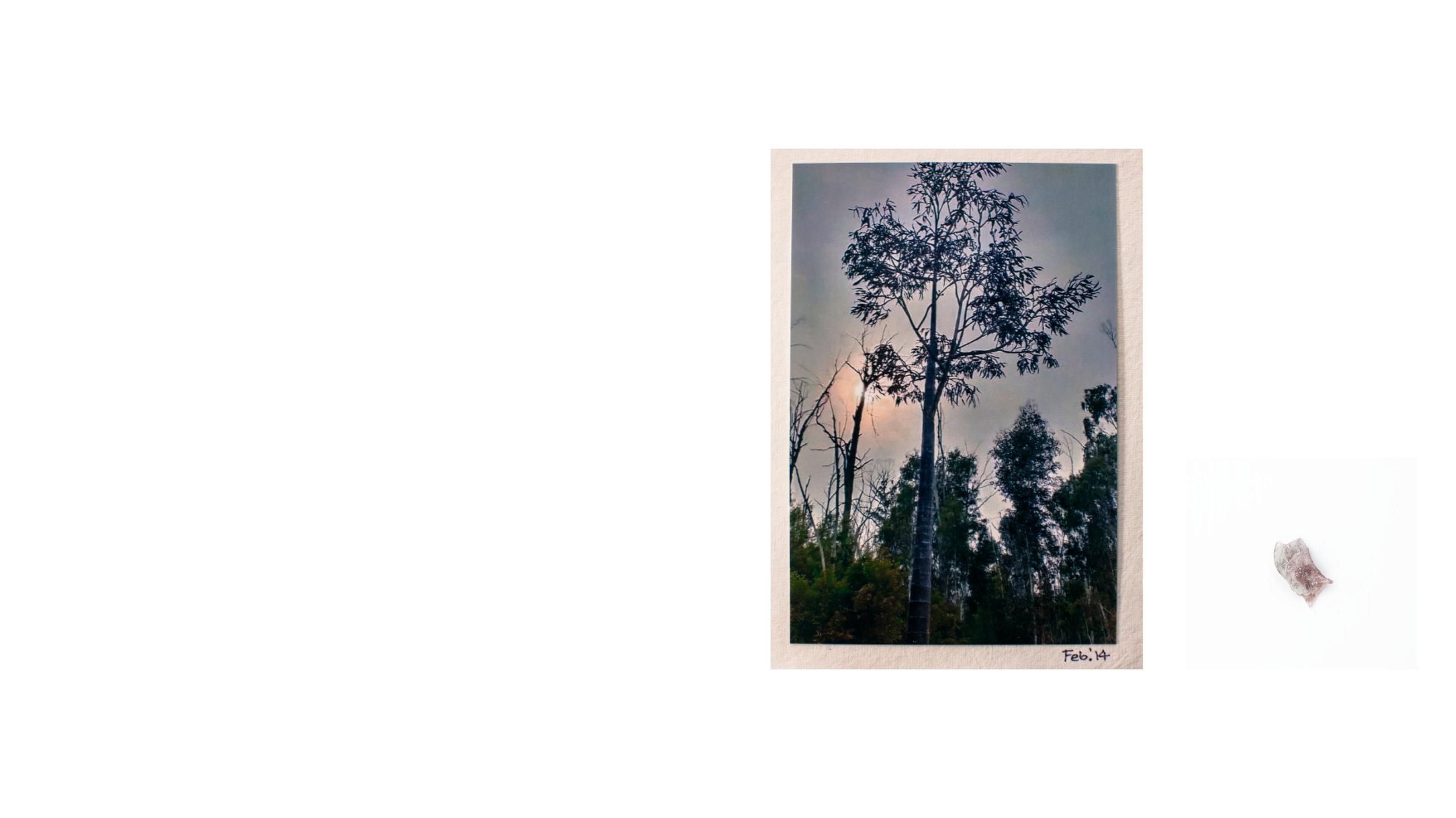 Untitled-1023.jpg