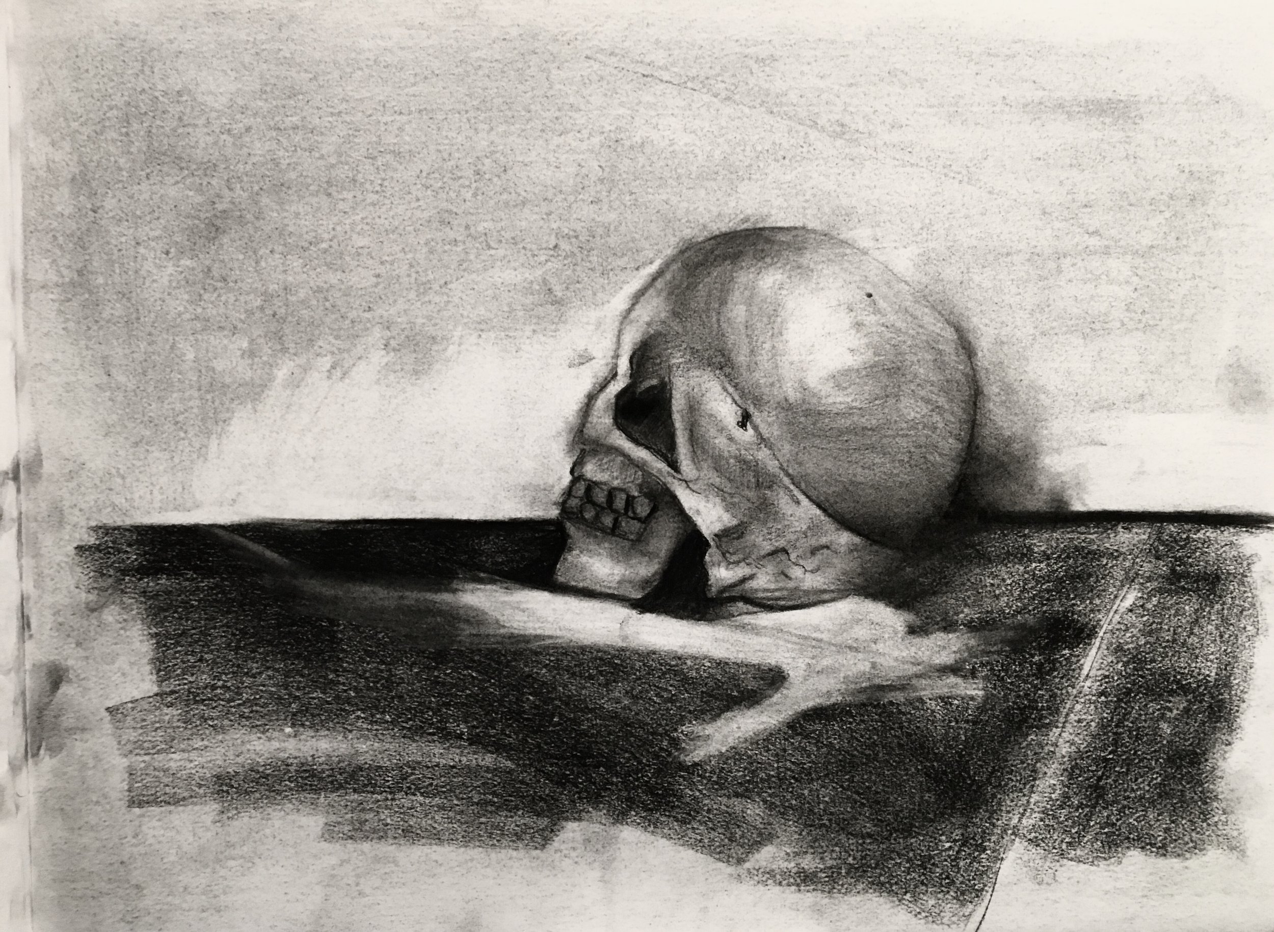 Skull    -     Charcoal - 18x24 - 2017