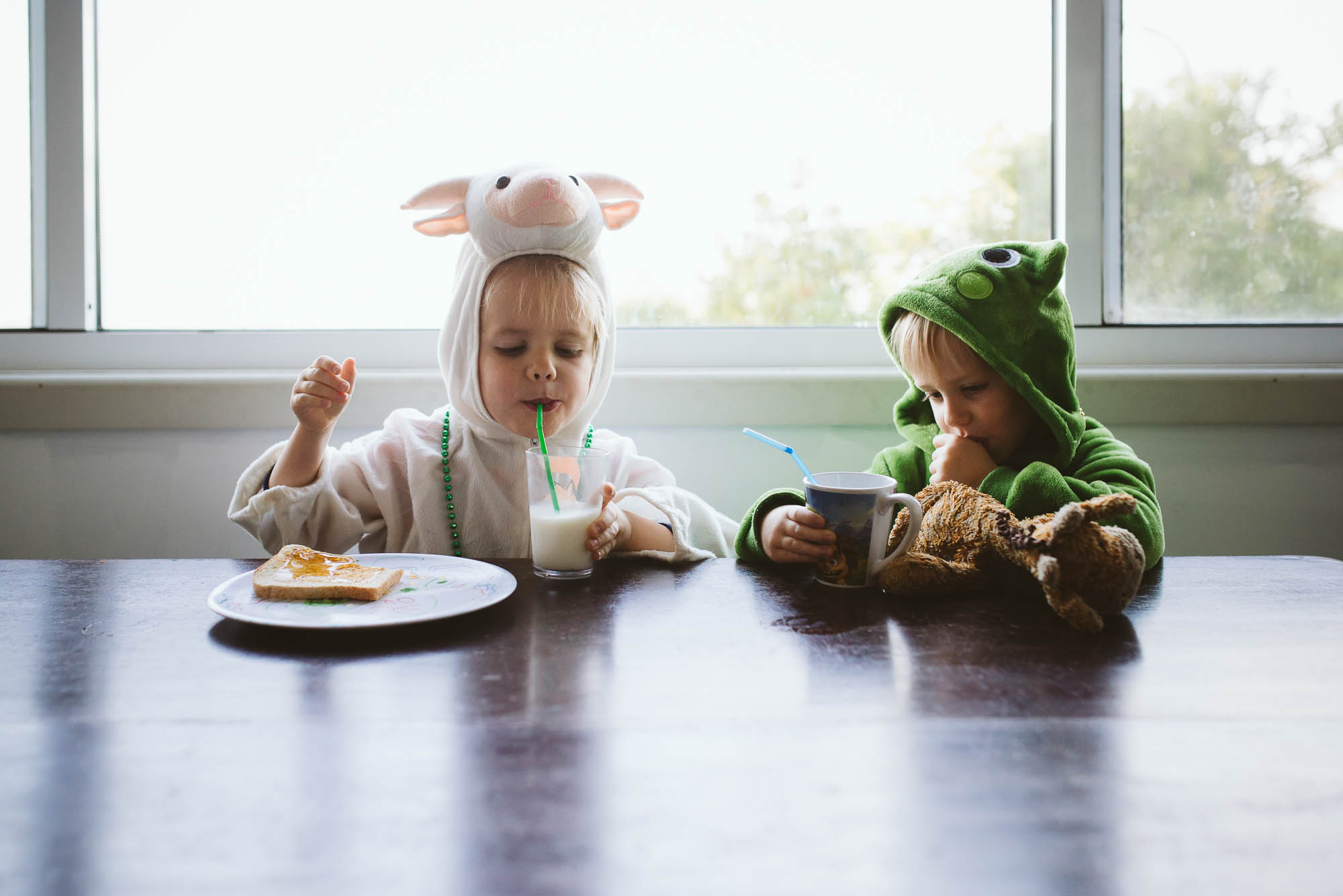 brothers-eating-at-table-together-in-animal-dress-up-costumes