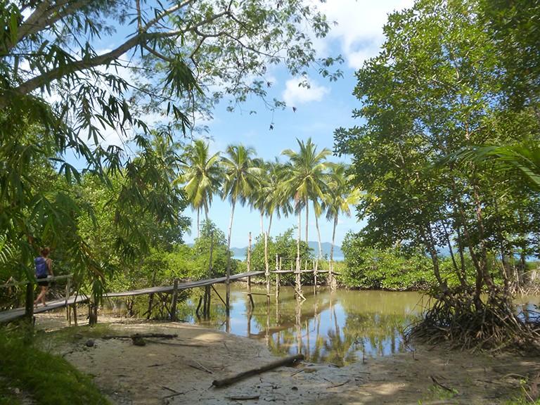 This is in the natural area of Port Barton, Palawan, Philippines, where many people still build their own houses and whatever needed, from Nature.