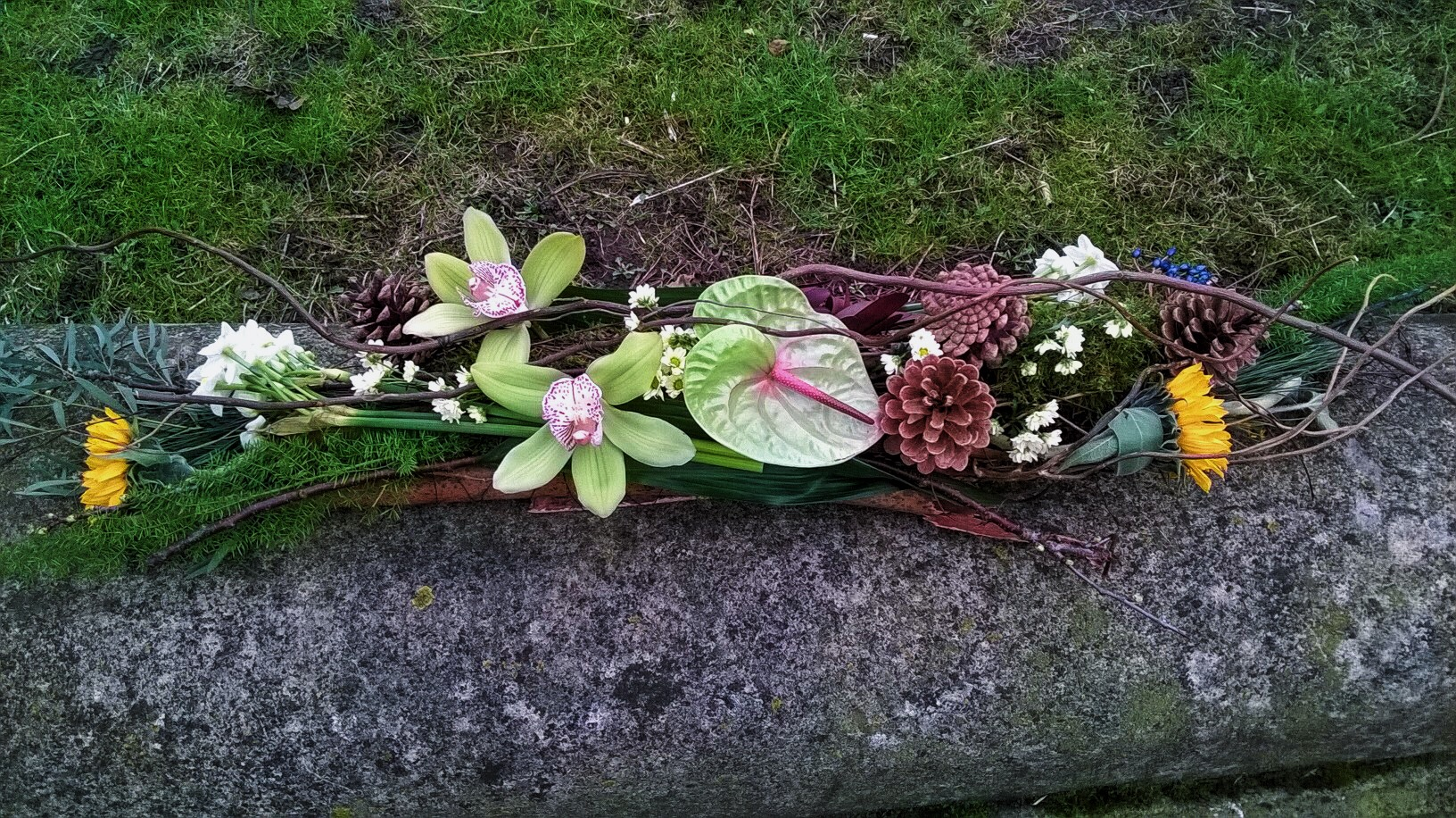 Natural Coffin spray Clare Cowling Feb 2016.jpg