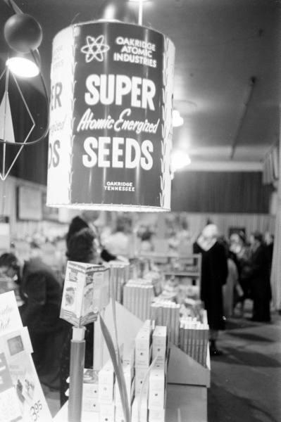 50's seeds!
