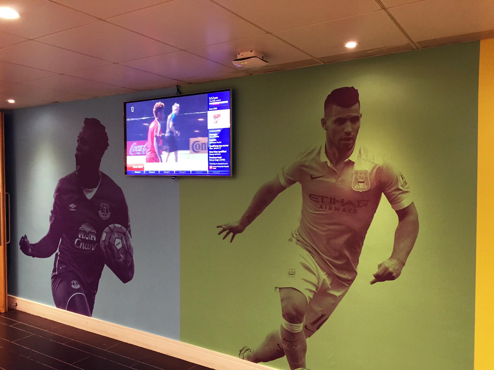 Premier League Wall Vinyl