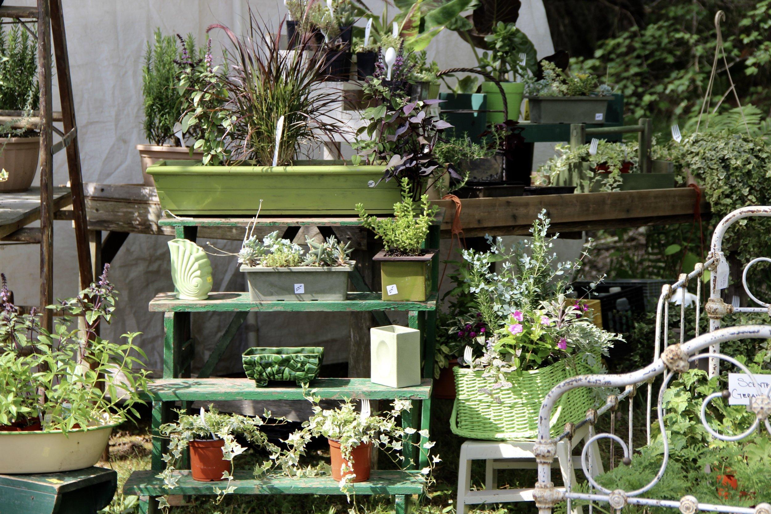 Susan Bates Home and Garden