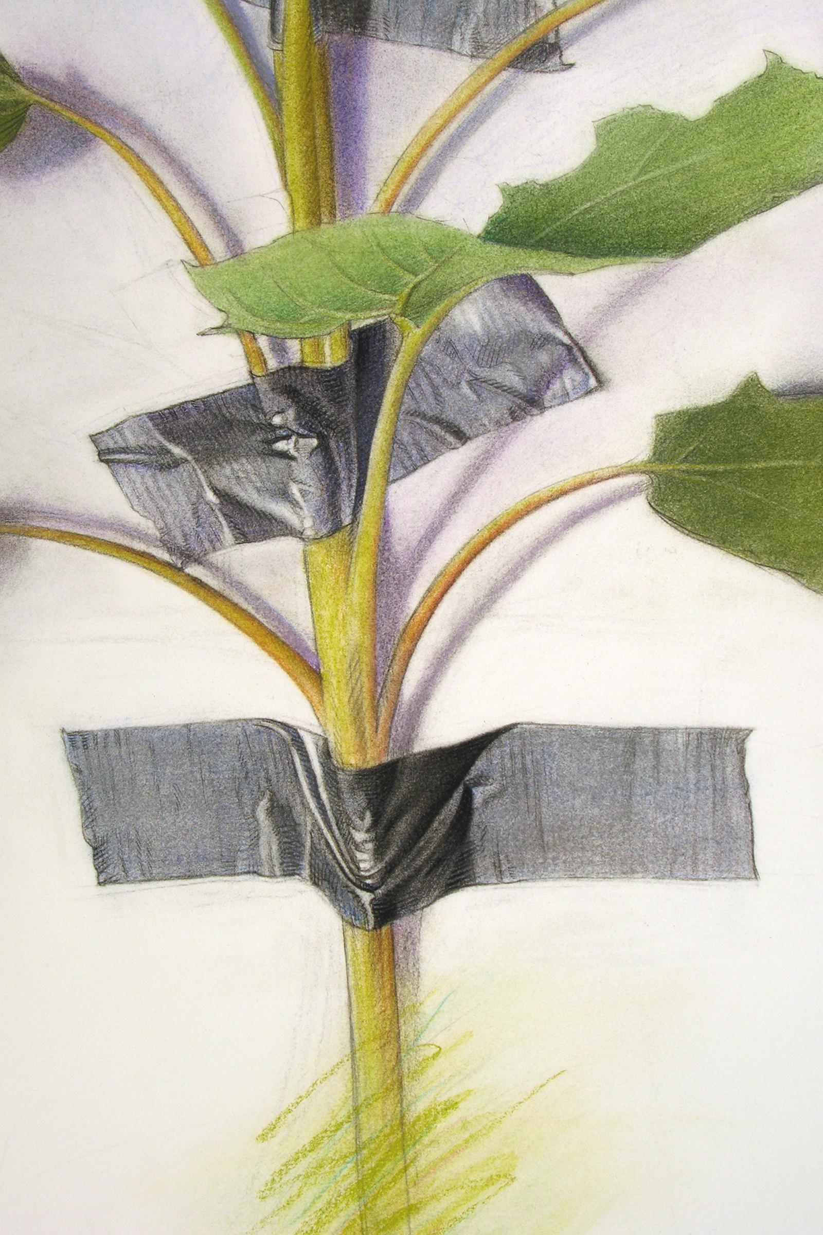 Wallflower I, detail