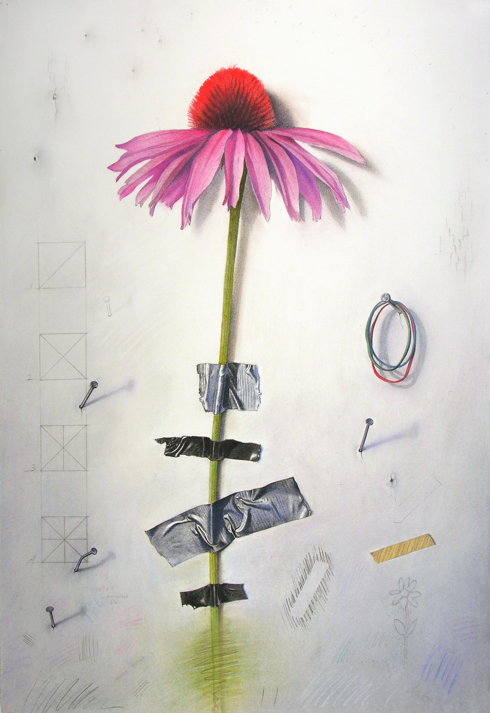 Wallflower 2