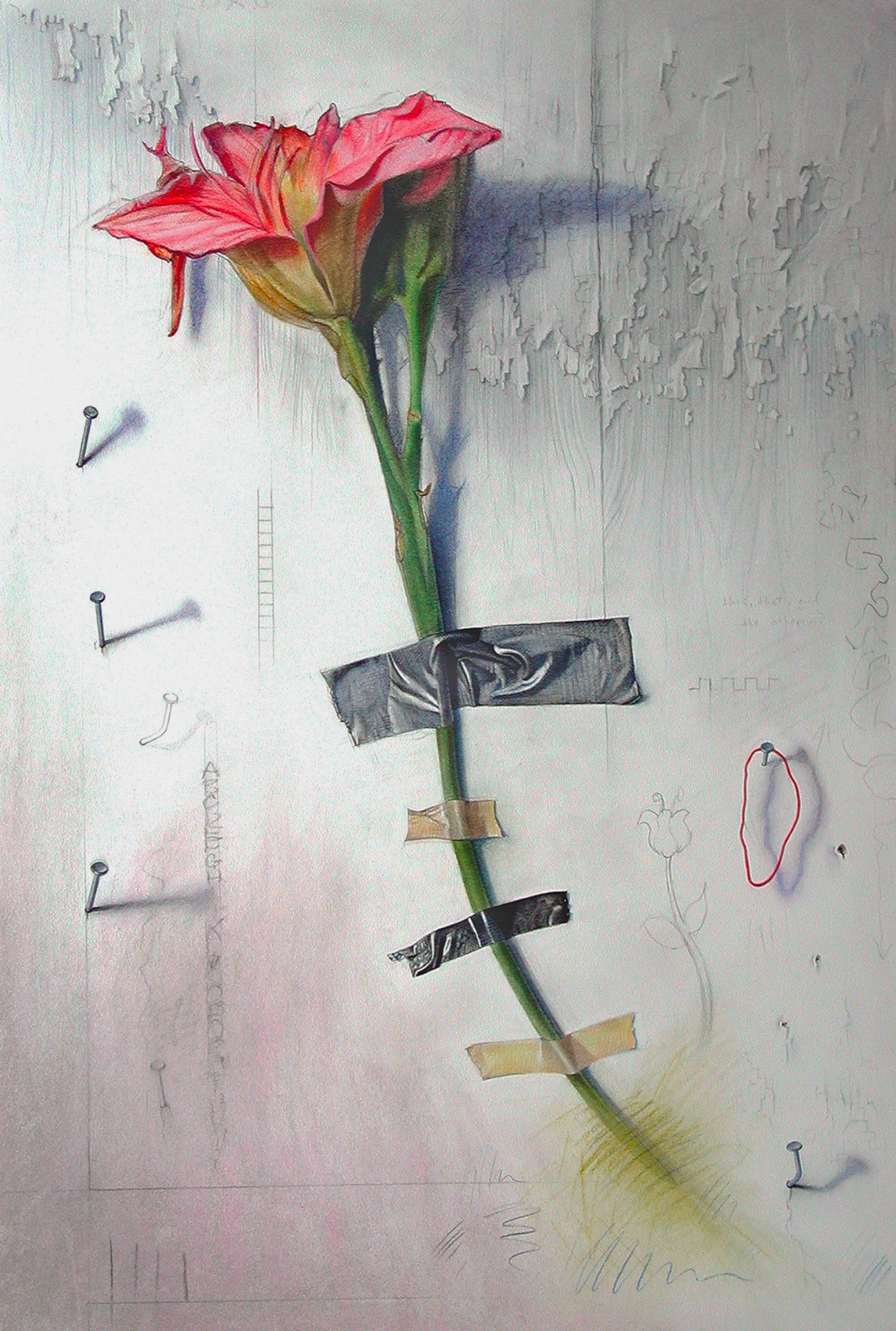Wallflower 4