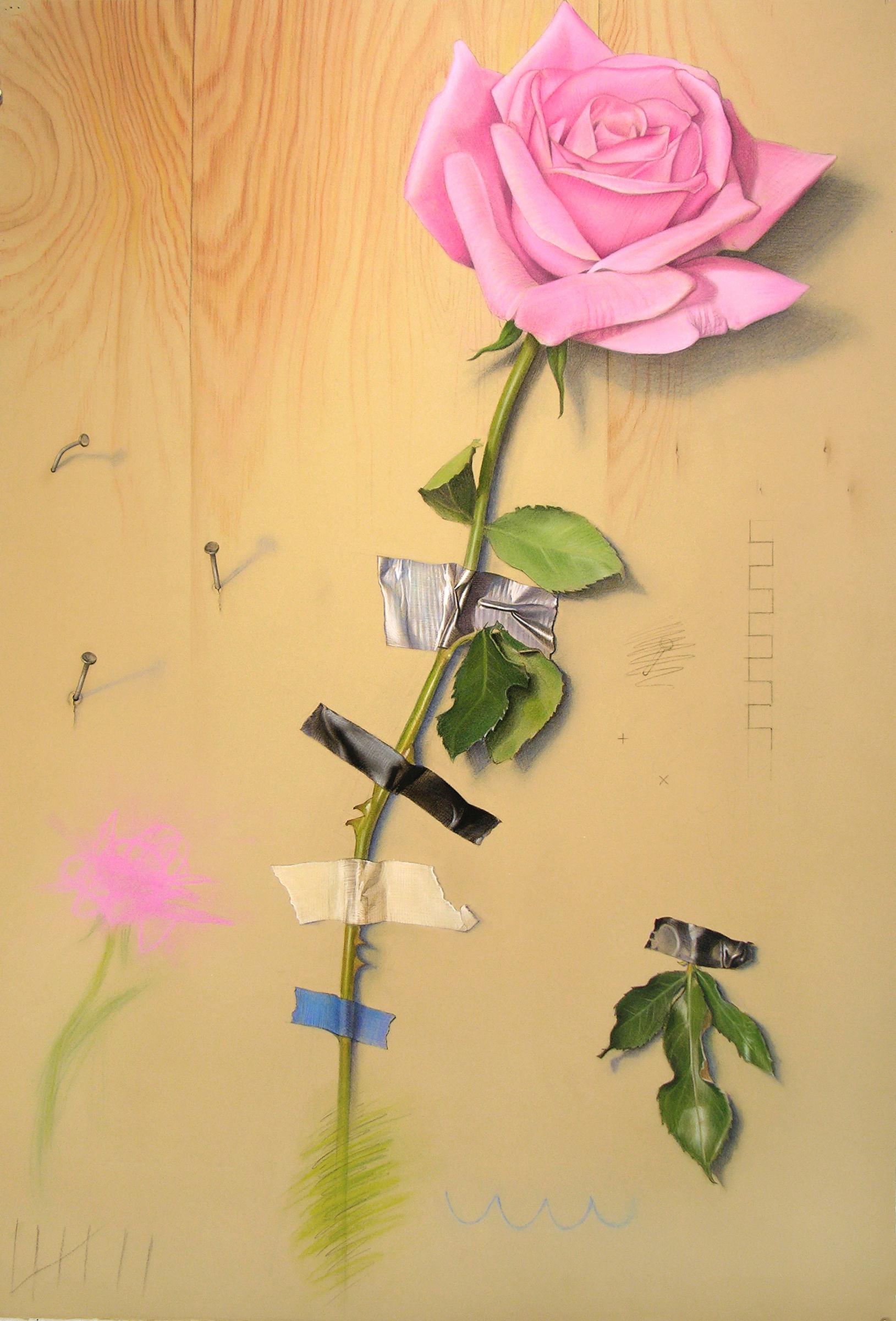 Wallflower 7