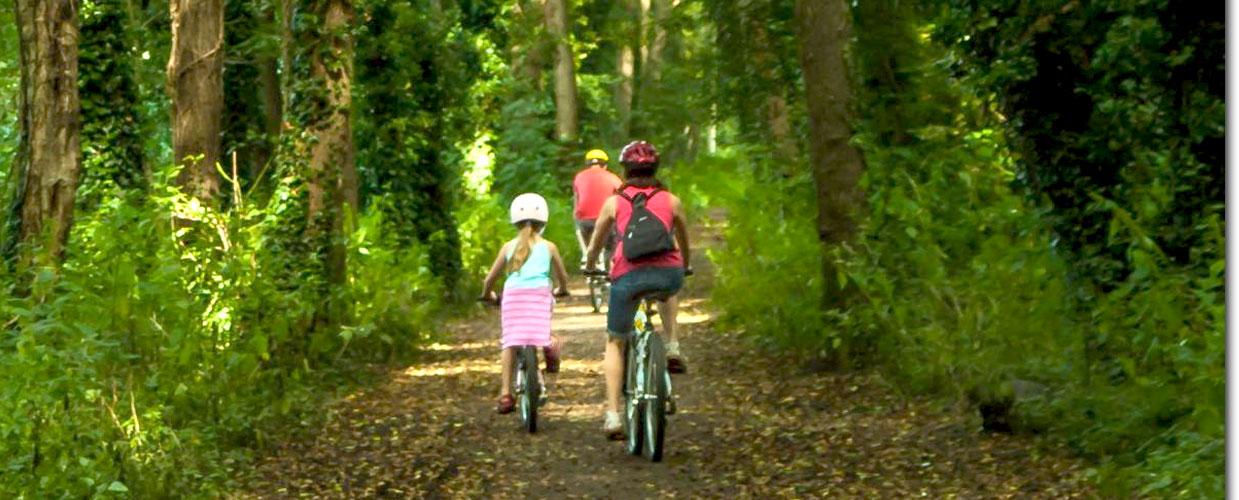 kids-bikes.jpg