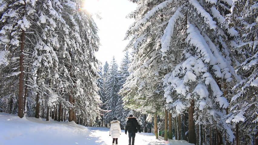 winter walk.jpg