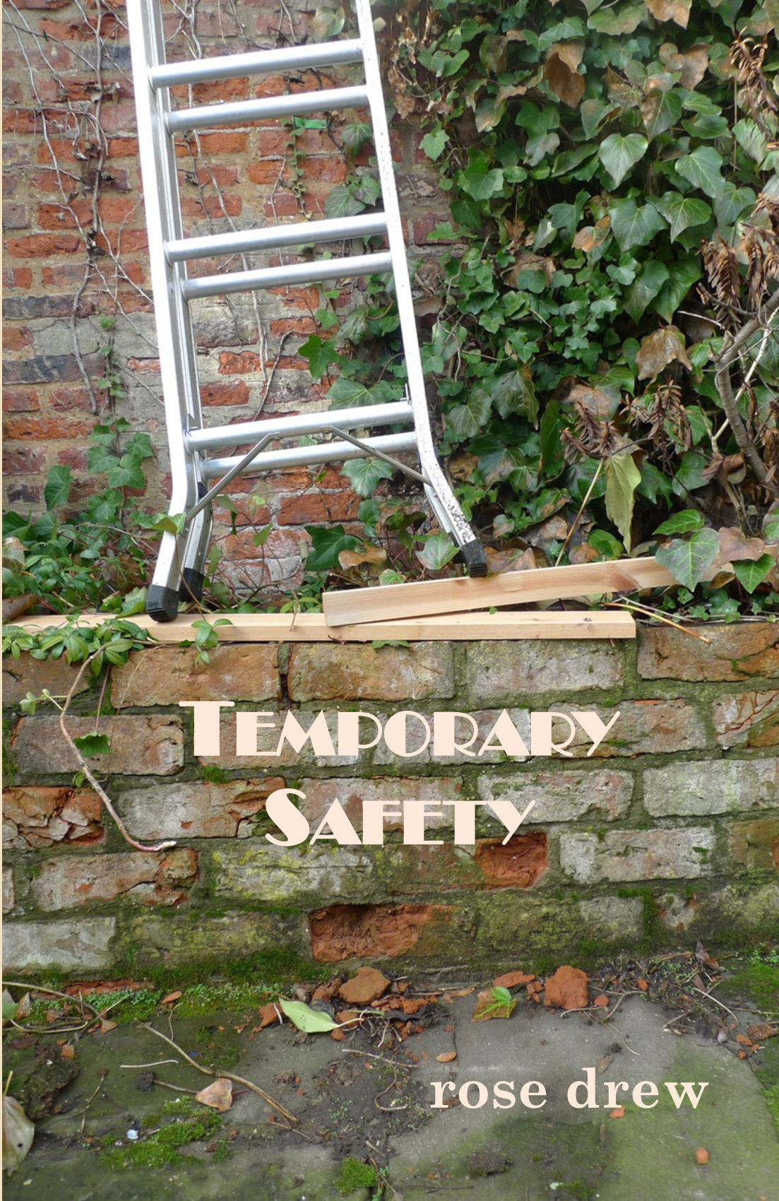 Temporary SafetyBy Rose Drew -