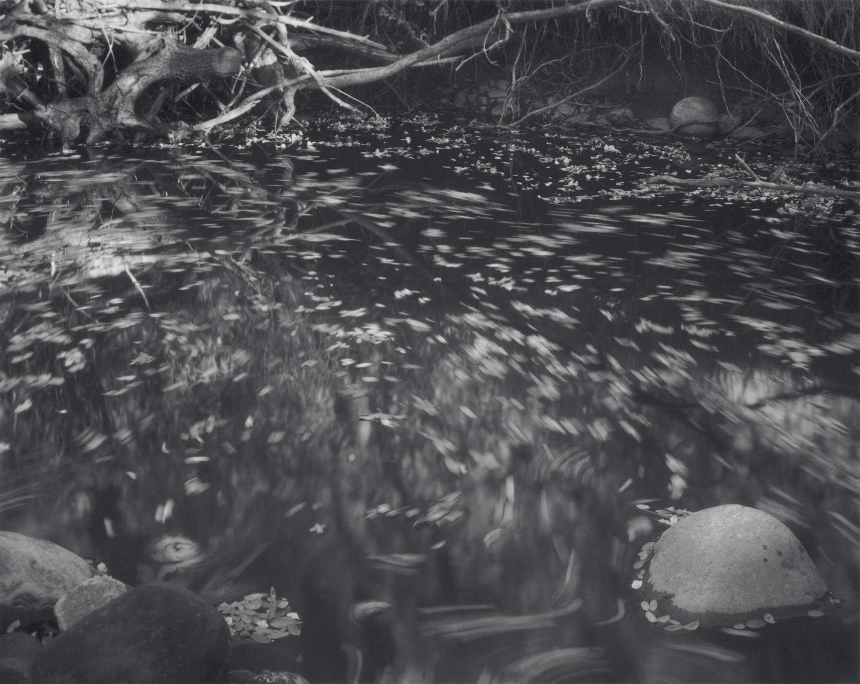 Circulation, Chaos Pond, El Rito, October, 1998