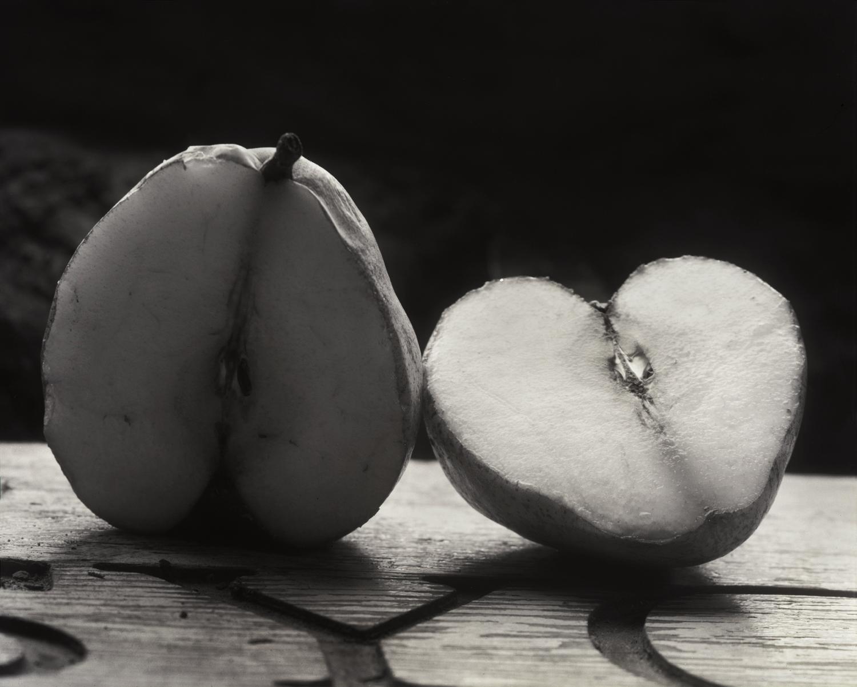 The Last Christmas Pear, El Rito, 1998