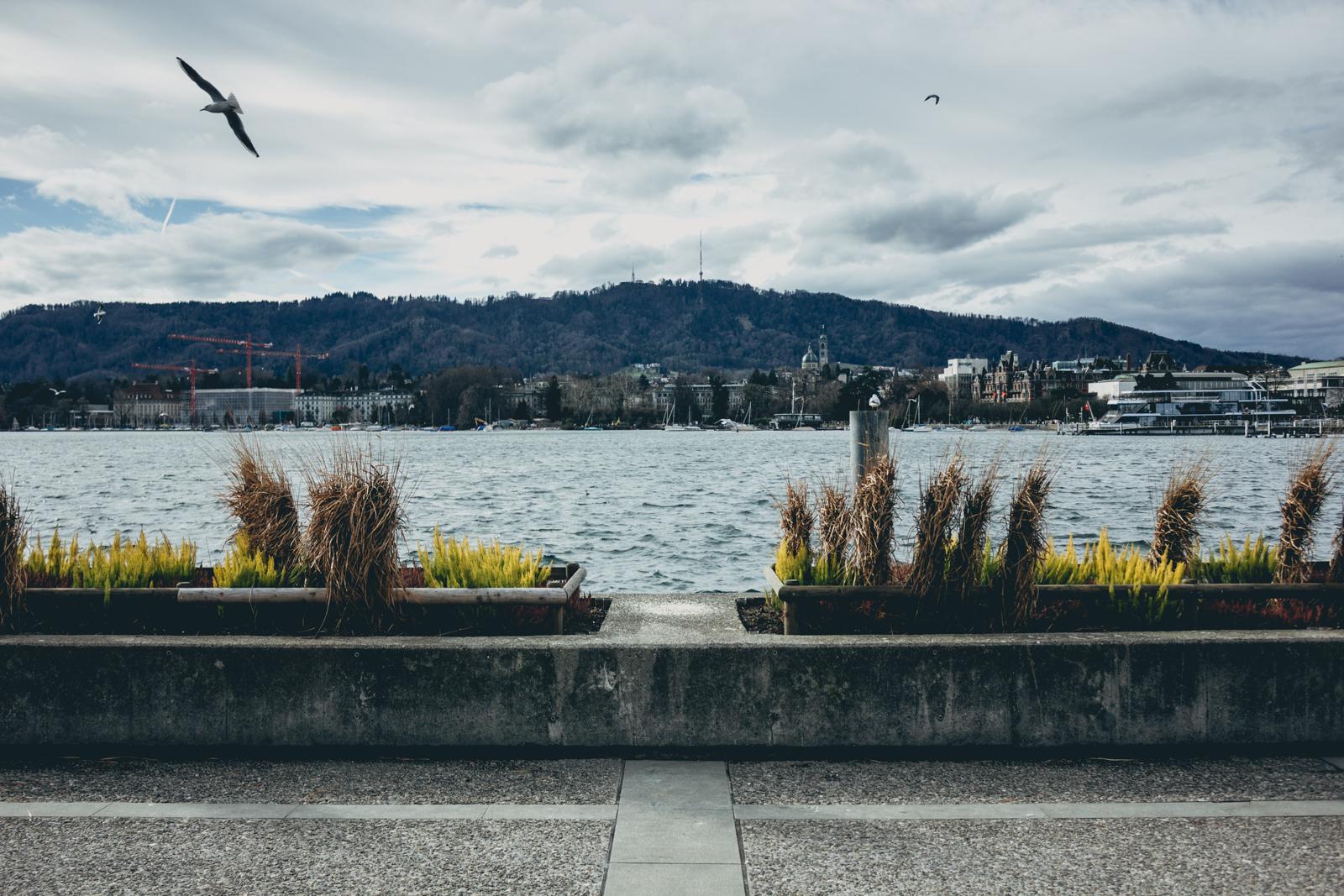 Suiza-06.jpg