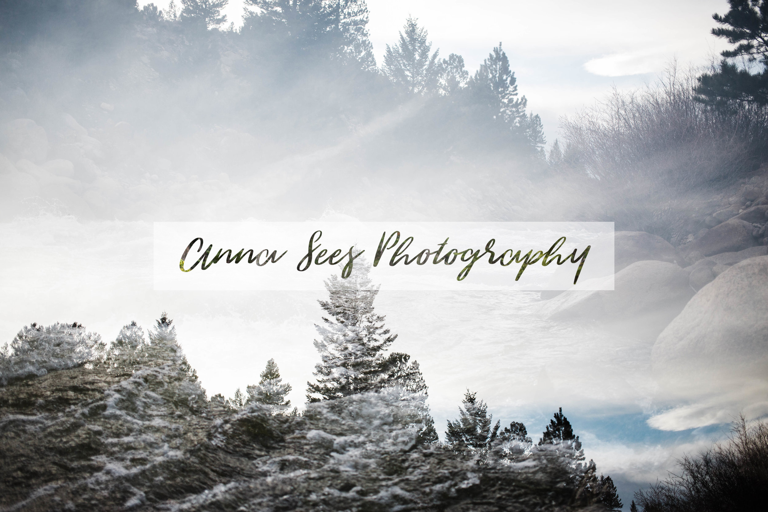 © 2019 Anna Sees Photography, LLC