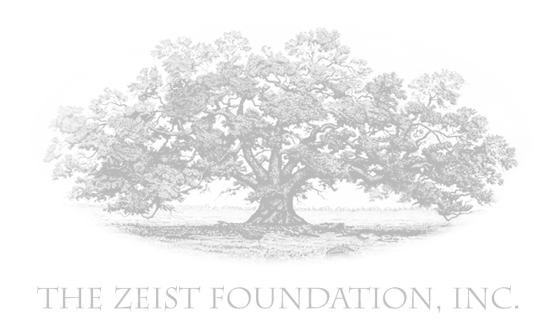logo_ZeistFoundation.png