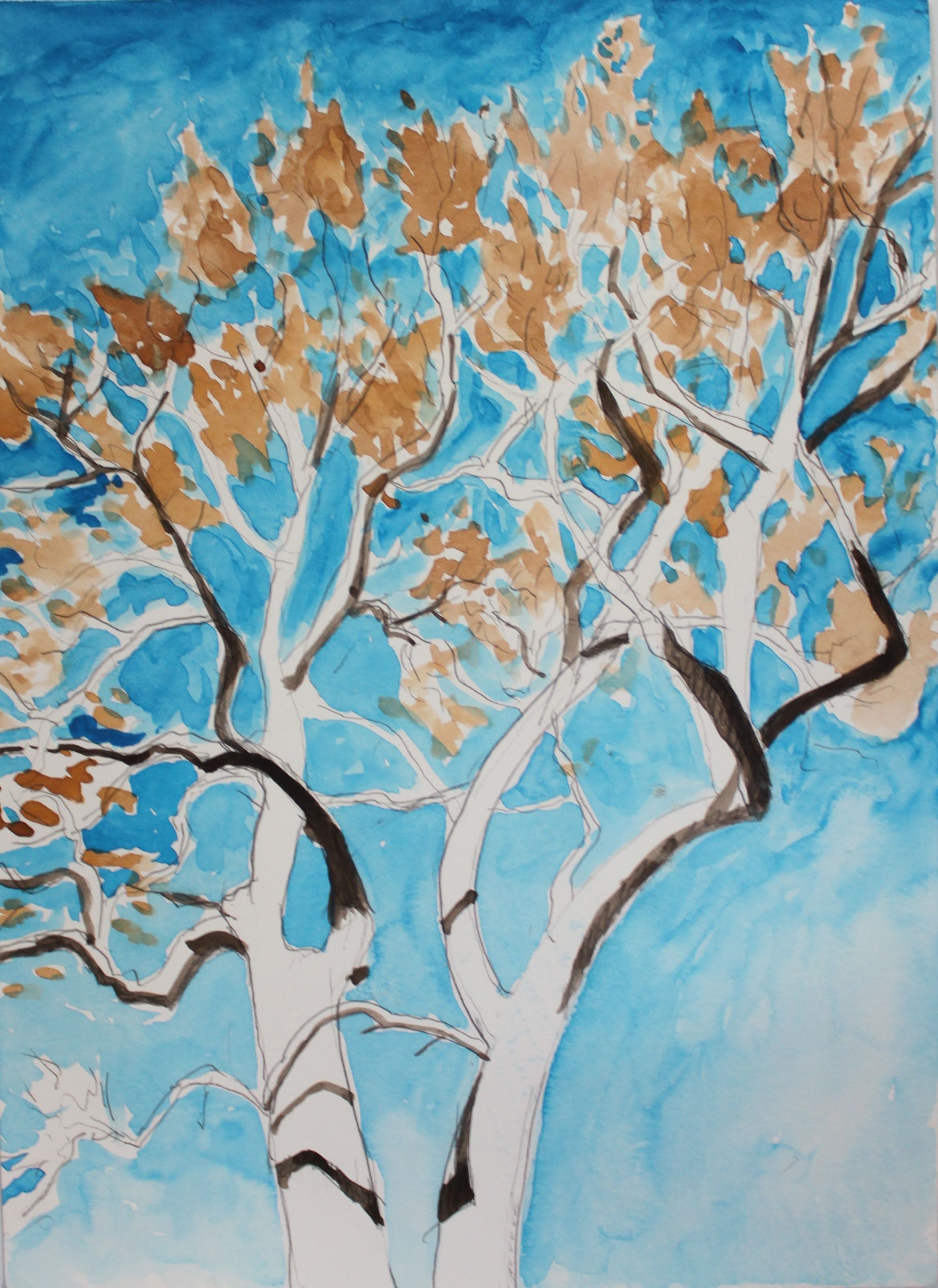 Sycamore Tree, 2016, watercolor, 14 x 9 in.