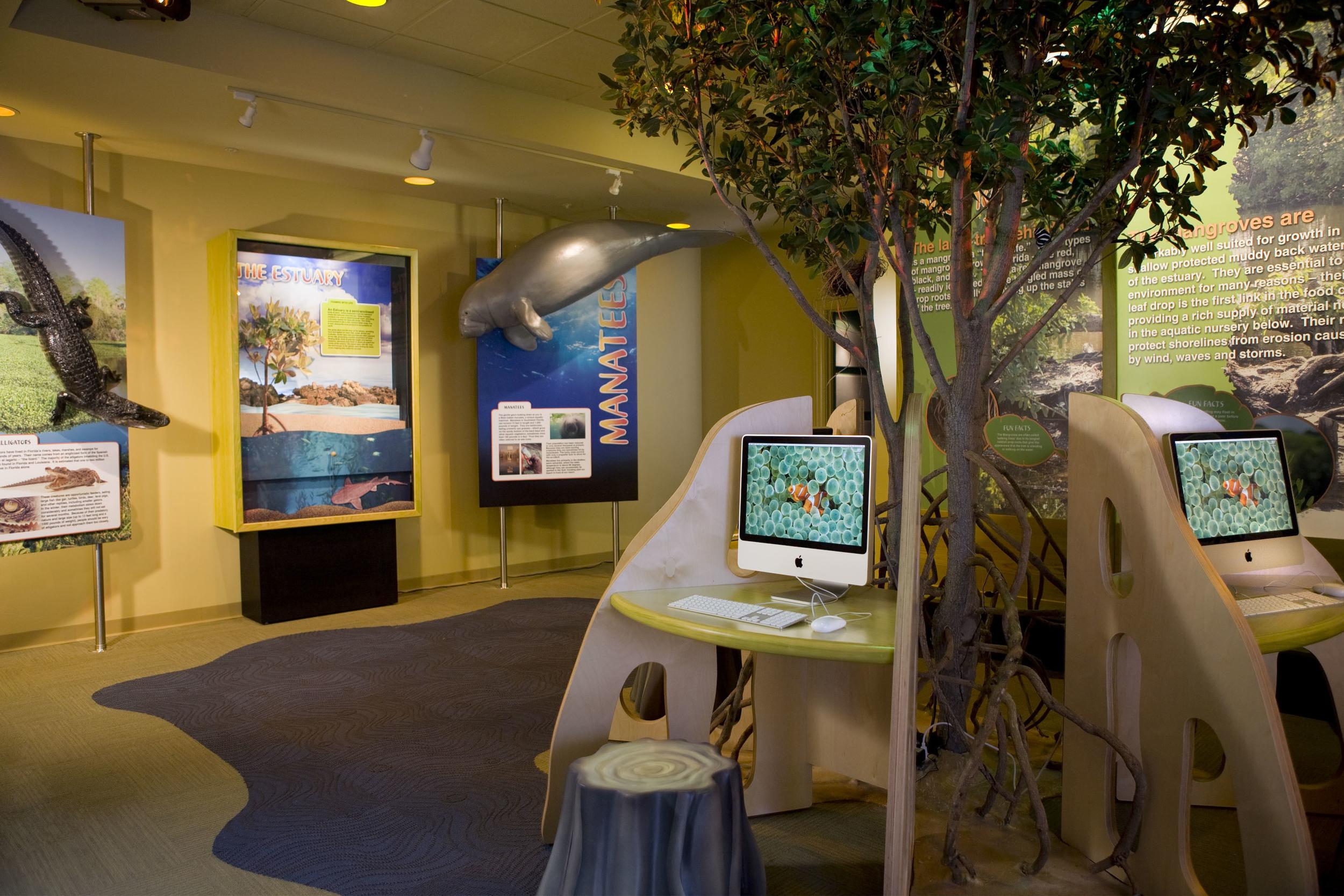 Mangrove computer stations.jpg