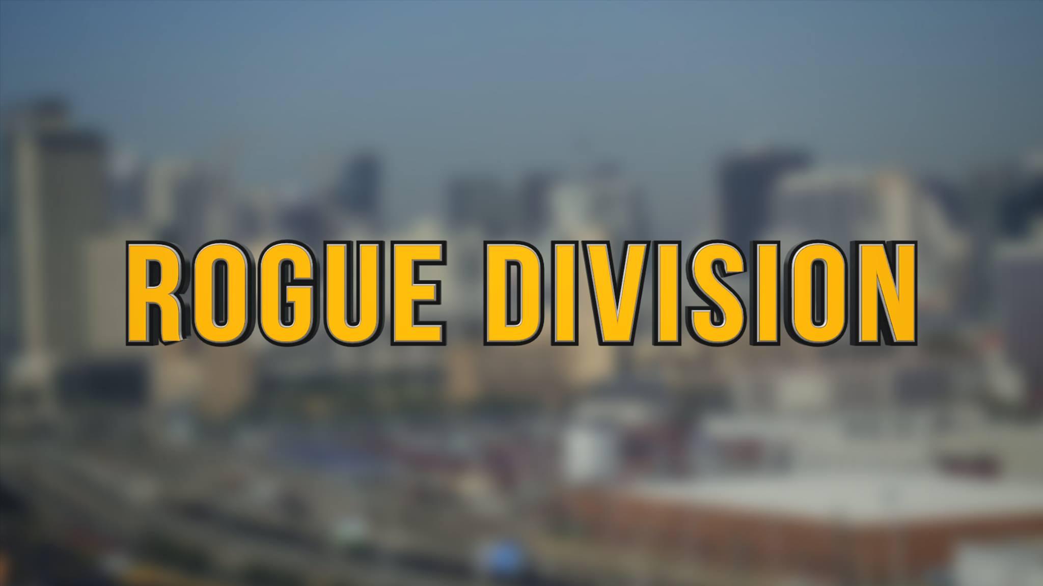 Rogue Division 2015 Facebook Banner